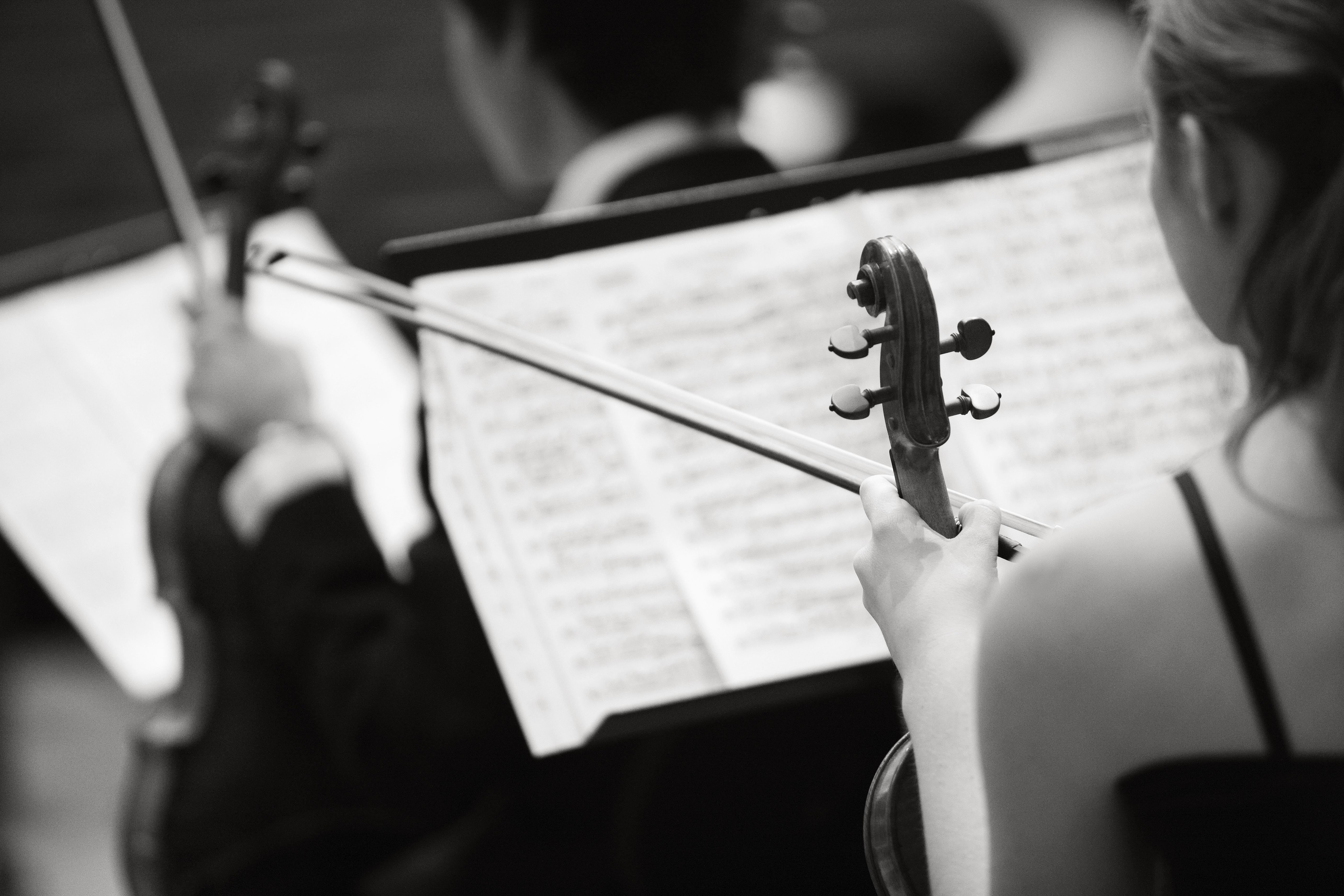 fiolin med noter